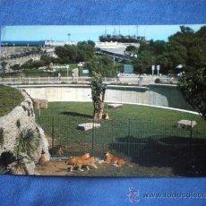 Postales: POSTAL SANTANDER PENINSULA DE LA MAGDALENA PARQUE DE LOS LEONES NO CIRCULADA. Lote 30446259