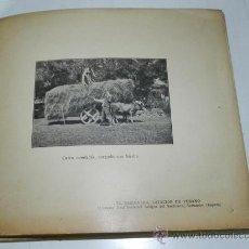 Postales: ANTIGUO ALBUM CON 37 FOTOTIPIAS DE CANTABRIA, ED. REAL SOCIEDAD AMIGOS DEL SARDINERO, SANTANDER, EL . Lote 32065141