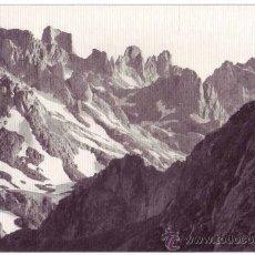 Postales: POTES (CANTABRIA): REGIÓN DE LIÉBANA. PICOS DE EUROPA. FOTO E. BUSTAMANTE. NO CIRCULADA (AÑOS 50). Lote 33529411