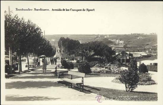 SANTANDER.- SARDINERO.- AVENIDA DE LOS CAMPOS DE SPORT (Postales - España - Cantabria Moderna (desde 1.940))