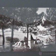 Postales: POSTAL CANTABRIA. SANTANDER. PARQUE DEL PALACIO DE LA MAGDALENA. . Lote 42224873