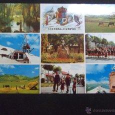 Postales: CANTABRIA-V23-SANTANDER-REINOSA- CAMPOO. Lote 42702426