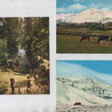 Postales: POSTALES-LOTE DE 3 TARJETAS DE REINOSA. Lote 57644011