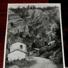 Postales: FOTOGRAFIA DE CANTABRIA, PUERTO DE SAJA, MIDE 17,5 X 12 CMS. FOTOGRAFO MARQUES DE SANTA MARIA DEL VI. Lote 45037856