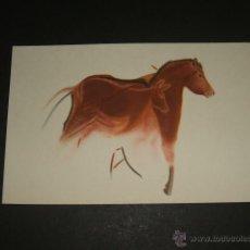 Postales: ALTAMIRA CANTABRIA CUEVA PINTURA RUPESTRE CABALLO SOBRE CIERVA. Lote 45633025