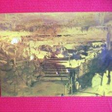Cartes Postales: CUEVAS DE ALTAMIRA - CANTABRIA. Lote 48032282