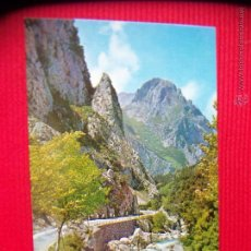 Cartes Postales: PICOS DE EUROPA - CANTABRIA. Lote 48034889