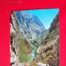 Cartes Postales: PICOS DE EUROPA - CANTABRIA. Lote 48037340