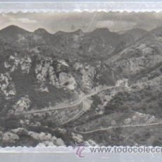 Postais: TARJETA POSTAL DE CABRALES, CANTABRIA - PUERTO DE LAS ESTAZADAS. 5. EDICION M.ARRIBAS. Lote 49906184