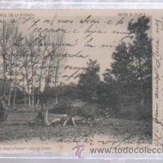 Postales: TARJETA POSTAL CANTABRIA - RINCONES MONTAÑESES. EN LA TIERRA. G.DE LA PUENTE. SERIE G. Nº 4. LAURENT. Lote 50015607