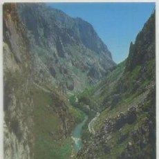 Cartes Postales: POSTAL DE SANTANDER. PICOS DE EUROPA. DESFILADERO DE LA HERMIDA P-CANT-506. Lote 54663858