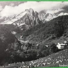 Cartoline: ESPINAMA - LIEBANA - PICOS DE EUROPA - FOTO BUSTAMANTE (POTES). Lote 76409623