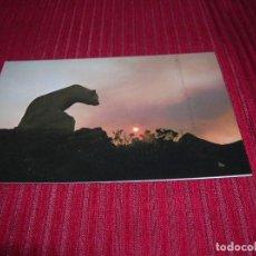 Postales: PICOS DE EUROPA .MONUMENTO AL OSO .PUERTO DE SAN GLORIO. Lote 95953383