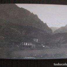 Postales: CAMALEÑO - POSTAL ANTIGUA FOTOGRAFICA- FOTOGRAFO ALVARO FERNANDEZ -VER FOTOS-(51.534). Lote 109566371