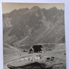 Postales: POTES SANTANDER PICOS DE EUROPA REGION DE LLEBANA CAMPAMENTO FOTO E. BUSTAMANTE. Lote 126456883