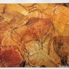 Cartes Postales: CUEVAS DE ALTAMIRA (CANTABRIA). 502 PINTURAS MURALES. JOAQUÍN BEDIA CANO. NUEVA. COLOR. Lote 128541852
