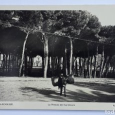 Postales: 122. SANTANDER. LA PINEDA DEL SARDINERO. FOTO. L. ROISIN. Lote 128776510