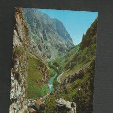 Postales: POSTAL SIN CIRCULAR - PICOS DE EUROPA 131 - EDITA BUSTAMANTE. Lote 133797438