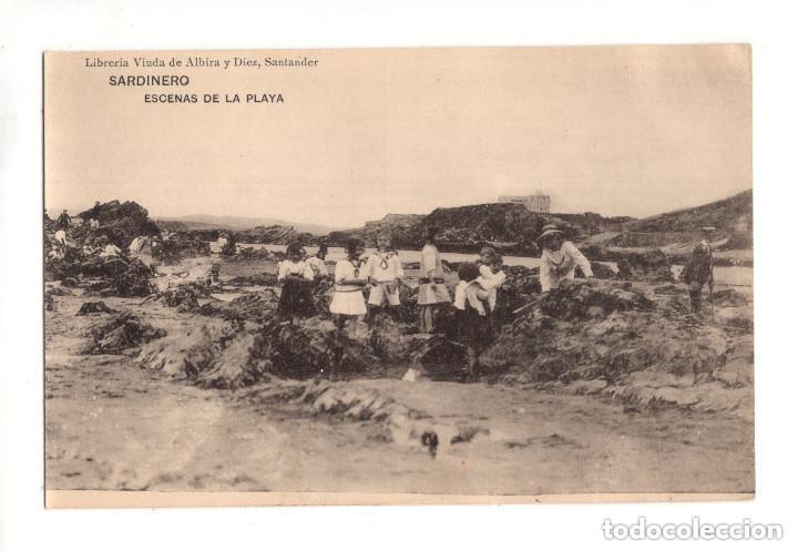SANTANDER.(CANTABRIA).- SARDINERO. ESCENAS DE LA PLAYA. LIBRERIA VIUDA DE ALBIRA. (Postales - España - Cantabria Antigua (hasta 1.939))