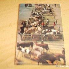 Postales: TORRELAVEGA - CANTABRIA- MERCADO DE GANADOS. Lote 155377010