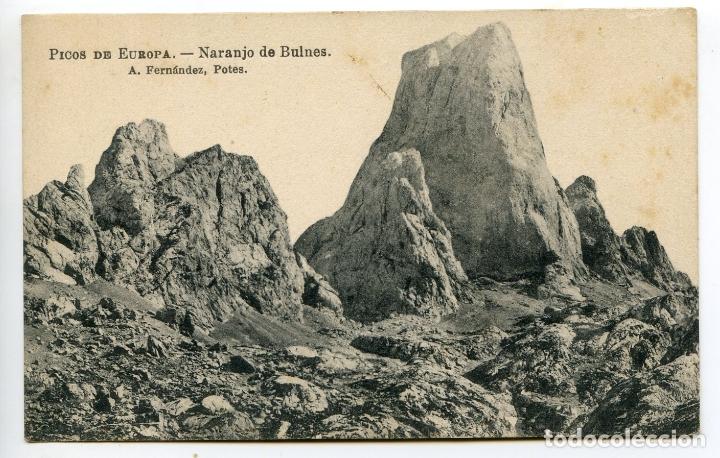 PICOS DE EUROPA. NARANJO DE BULNES. A. FERNÁNDEZ. POTES (Postales - España - Cantabria Antigua (hasta 1.939))