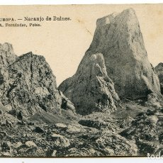 Postales: PICOS DE EUROPA. NARANJO DE BULNES. A. FERNÁNDEZ. POTES. Lote 171199695