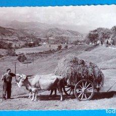 Postales: POSTAL DE SANTANDER: PAISAJE TÍPICO MONTAÑES. Lote 189707655