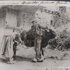 Postales: CANTABRIA-COL· LA TIERRUCA-LECHERA ORDEÑANDO-FOT·LAURENT-REVERSO SIN DIVIDIR-POSTAL ANTIGUA-(65.793). Lote 189898361