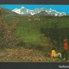 Postales: POSTAL SIN CIRCULAR - SANTANDER 179 - PICOS DE EUROPA - EDITA ALSAR. Lote 190794875