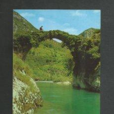 Postales: POSTAL SIN CIRCULAR - PICOS DE EUROPA 76 - PUENTE SOBRE EL CARES - EDITA BUSTAMANTE. Lote 195164342