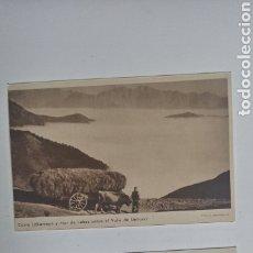 Postales: LOTE 2 POSTALES PICOS DE EUROPA POTES Y VALLE DE LIEBANA. Lote 200362321