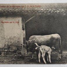 Postales: 8- HACIENDO POR LA VIDA. 《EL SABOR DE LA TIERRUCA》POR J. G. DE LA PUENTE.. Lote 207946830