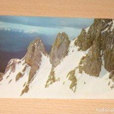 Postales: POSTAL DE PICOS DE EUROPA. Lote 213763193
