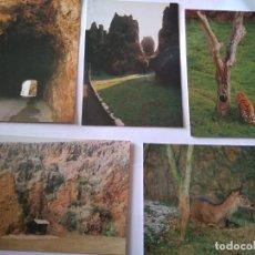 Postales: PARQUE NATURAL CARBACENO - CANTABRIA - 5 POSTALES. Lote 220191047