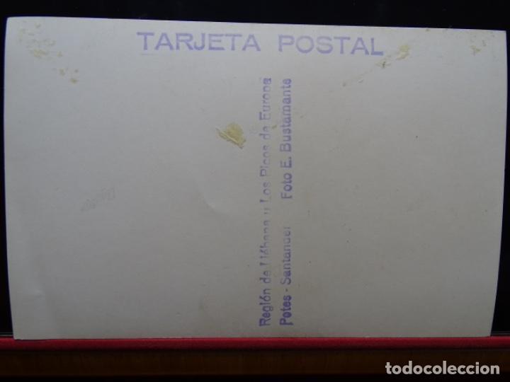 Postales: POTES.REGIÓN DE LIEBANA Y LOS PICOS DE EUROPA.FOTO E. BUSTAMANTE. - Foto 3 - 227760580