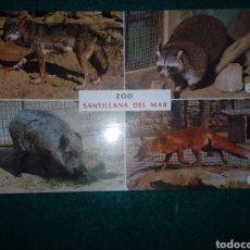 Postales: POSTAL DEL ZOO DE SANTILLANA DEL MAR. CANTABRIA N 3 BUSTAMANTE. Lote 235602880
