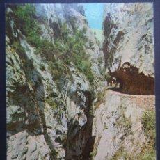 Postales: GARGANTA DEL CARES (SANTANDER ) ANTIGUA POSTAL SIN CIRCULAR. Lote 244811540