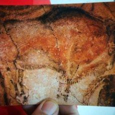 Postales: POSTAL CUEVA DE ALTAMIRA SANTANDER SANTILLANA DEL MAR BISONTE N 143. VERRIE 1966 ESCRITA. Lote 267796824