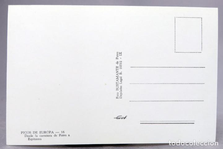 Postales: Postal Picos Europa Desde la carretera Potes a Espinama Foto Bustamante años 60 sin circular - Foto 2 - 288684418