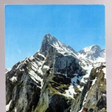 Postales: POSTAL PICOS EUROPA DESDE EL MIRADOR DEL CABLE GENTE FOTO BUSTAMANTE AÑOS 60 SIN CIRCULAR. Lote 288684663