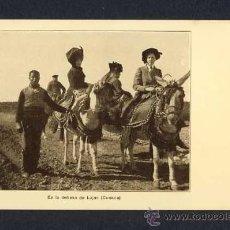 Postales: POSTAL DE CUENCA: EN LA DEHESA DE LUJAN (ED.FRANZ BOHMAN'S) (ANIMADA). Lote 10011508