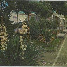 Postales: TARJETA POSTAL DE PUERTOLLANO JARDINES DE SAN GREGORIO CIUDAD REAL. Lote 12572433
