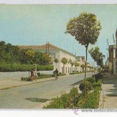 Postales: TARJETA POSTAL DE SOCUELLAMOS PASEO CERVANTES CIUDAD REAL. Lote 15838433
