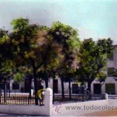 Postales: POSTAL CORRAL DE ALMAGUER PLAZA DE LOS MARTIRES. Lote 16109381