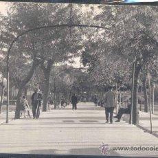 Postales: PUERTOLLANO (CIUDAD REAL).- PASEO DE SAN GREGORIO. Lote 27211458