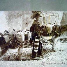Postales: MAGNIFICA TARJETA POSTAL, TOLEDANO CON BURROS PORTANDO CANTAROS, CIRCULADA, 1908. Lote 31957916