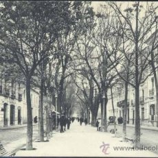 Postales: ALBACETE.- PASEO ALFONSO XII. Lote 34526052