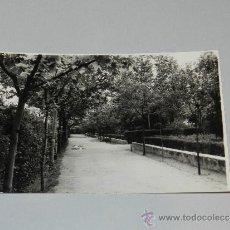 Postales: SOCUELLAMOS ( CIUDAD REAL ) PARQUE. Lote 35536102