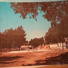 Postales: ALMADEN PARQUE MUNICIPAL 1966. Lote 42036783