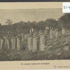 Postales: RUGUILLA - COLMENAR - (31419). Lote 48890869